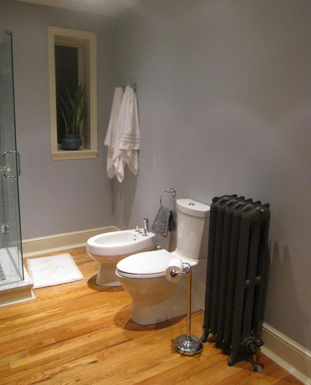 Bathroom Remodel: Toilet and Bidet